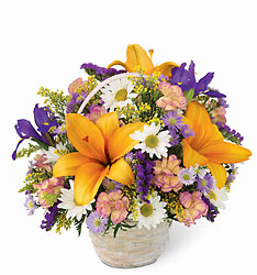 Natural Wonders Bouquet Flower Power, Florist Davenport FL